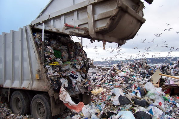 Депутаты хотят запретить вывоз пищевого мусора на свалки
