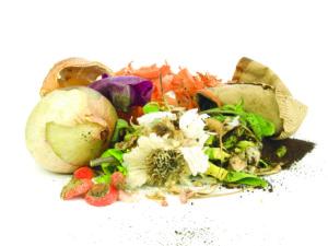 Переработка органического мусора