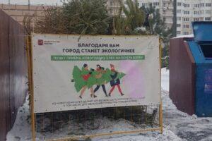 """Экоревизоры: """"Елочный круговорот"""" – 2021"""